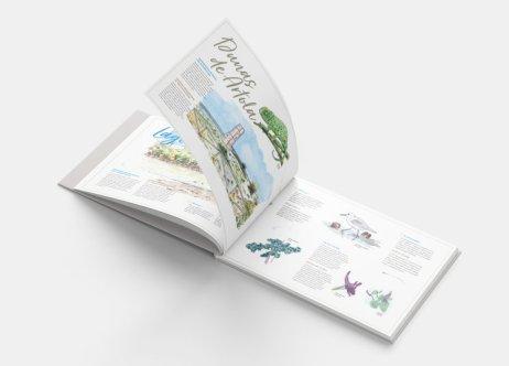 interior libro